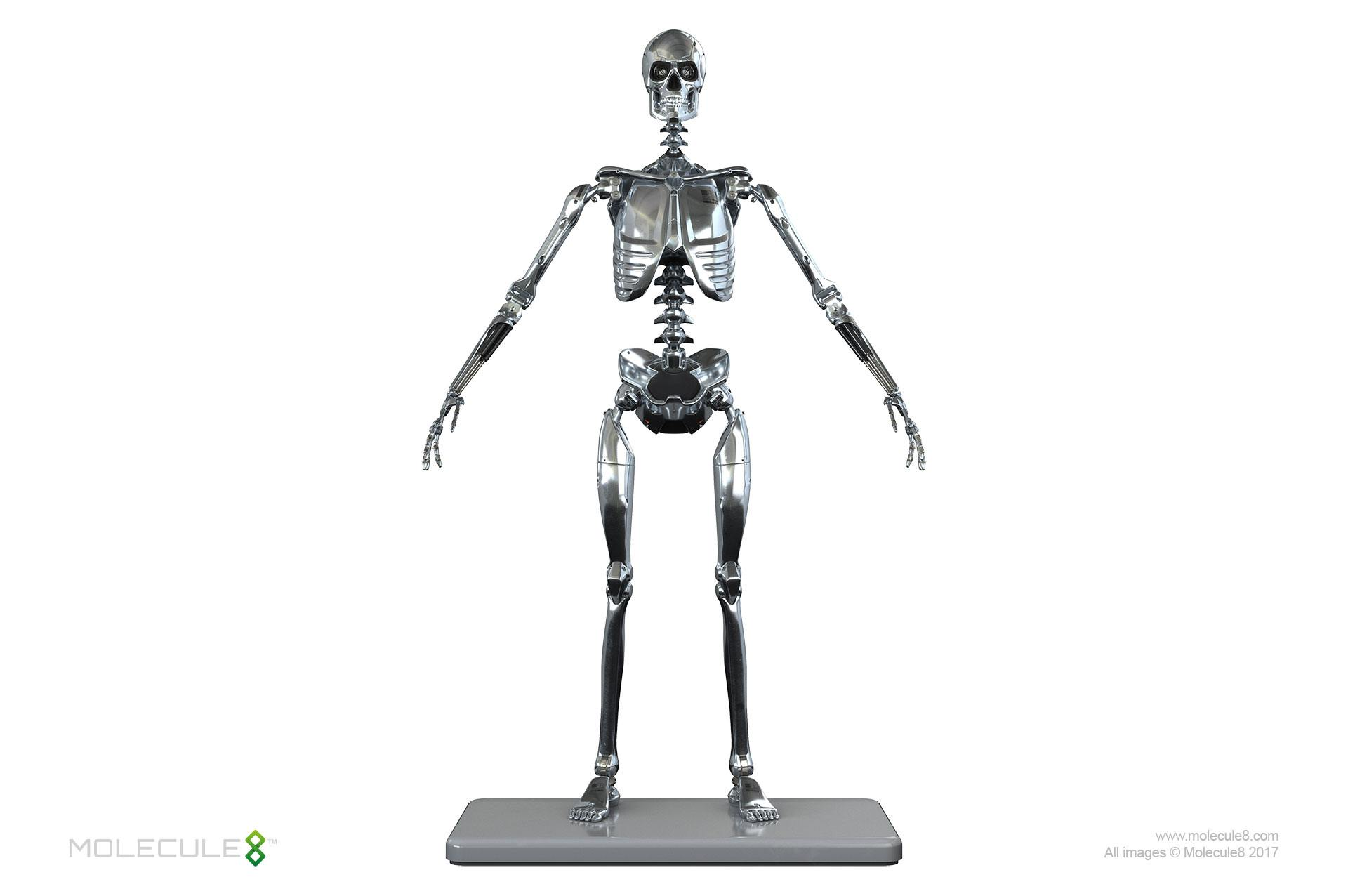 Stainless Steel Mark I Endoskeleton Action Figure 1  6
