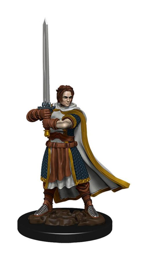 D&D Icons of the Realms Premium Miniature pre-painted Human Fighter Male Case (6)