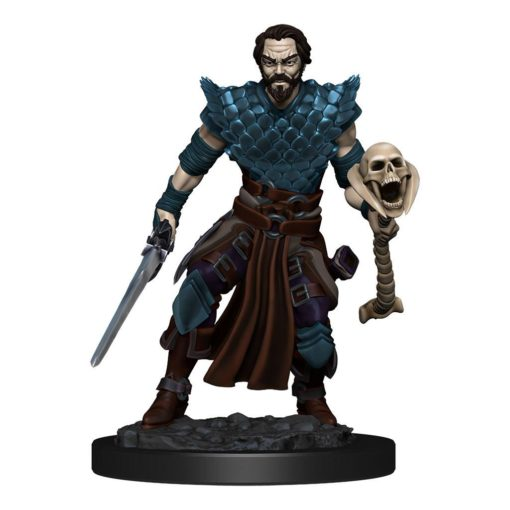 D&D Icons of the Realms Premium Miniature pre-painted Human Warlock Male Case (6)
